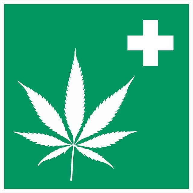 cannabis-2273795_640